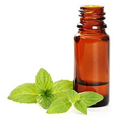 Using Essential Oils Around the Home