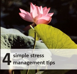 stressmanagementtips 300x285 Life Less Stressed