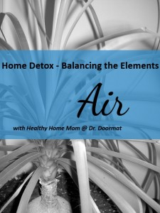 air 225x300 Home Detox   Balancing the Elements: Air