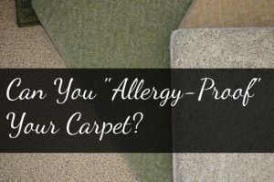 allergyproofyourcarpet 300x199 Can You Allergy Proof Your Carpet?